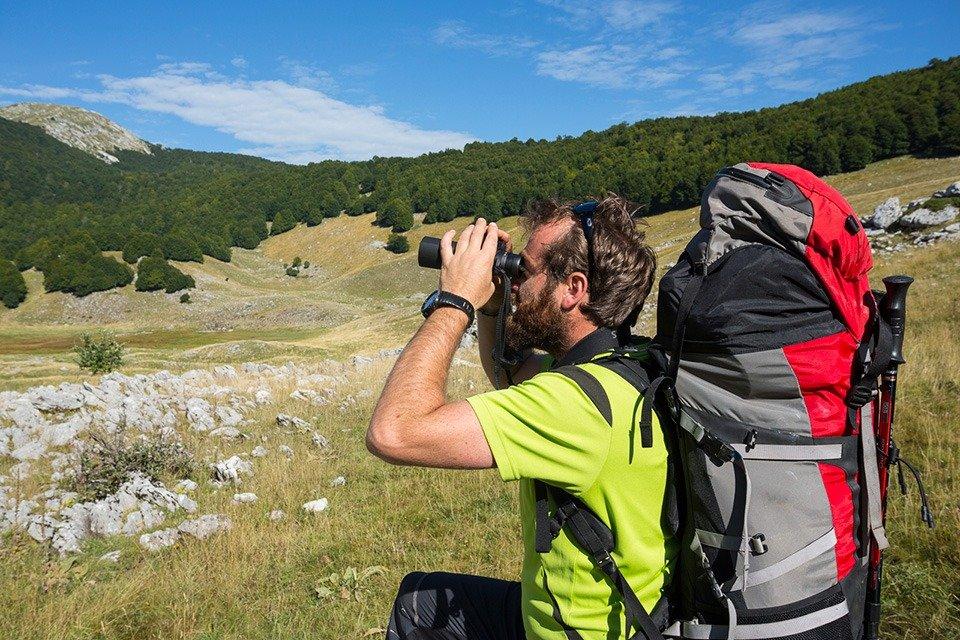 Wildlife watching in Abruzzo con le guide di Wildlife Adventures
