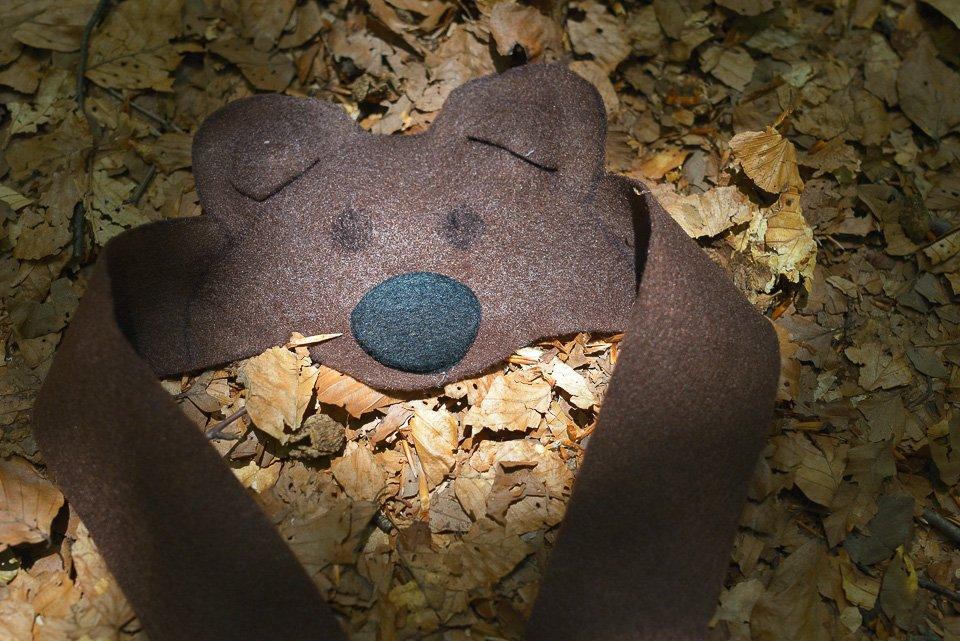 L'orso simbolo ed emblema del Parco Nazionale d'Abruzzo