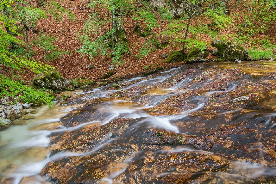 Le limpide acque del Torrente Fondillo, nel cuore del Parco Nazionale d'Abruzzo